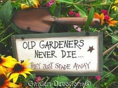 Funny Old Gardeners Never Die Wood Sign Shovel | eBay (now to find the ...