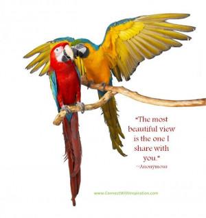 quotes birds, bird quotes.