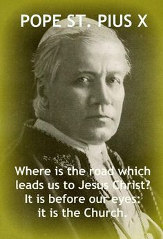 ... to Christ: 12 Memes on Pope St. Pius X with Explanations & Sources