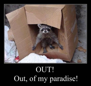 Involving Animals, funny motivational pictures, funny motivational ...