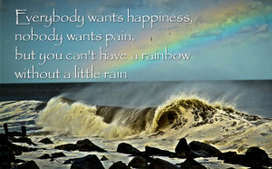 wants happiness, nobody wants pain, but you can't have a rainbow ...