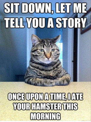cat sitting at the table, funny cat quotes