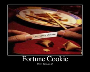 Related Pictures funny fortune cookie quotes this is your index html ...
