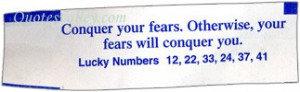 Conquer Your Fears, Otherwise Your Fears Will Conquer You