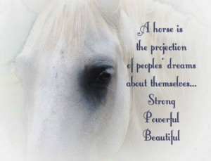 ... from our mundane existence. ~Pam Brown #quotes #inspirational #horses