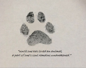 My Jackie's paw print and a quote
