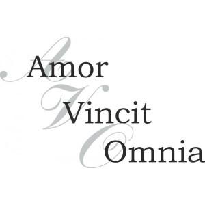 ... Quotes Amor, Love Latin Tattoo, Latin Tattoo Sayings, All Latin Quotes