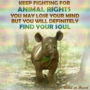 Keep fighting for Animal Rights you may lose your mind but you ...