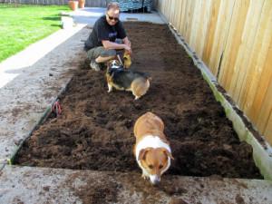 Mud Bogging Sayings The corgi mud bogs they