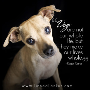 http://quotespictures.com/dogs-are-not-our-whole-lifebut-they-make-our ...