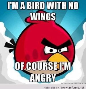 ... .com/im-a-bird-with-no-wings-of-course-im-angry-birds-quote
