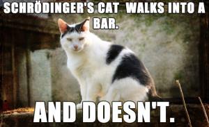 Schrodinger's cat walks into a bar…