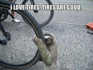 Funny Sloth Memes 03