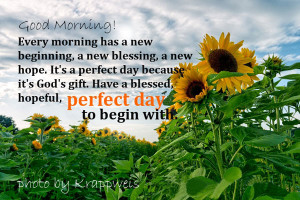 Popular Good Morning Quotes and Sayings
