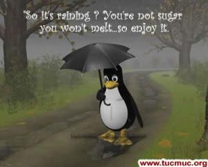funny rainy day: Rainy Day
