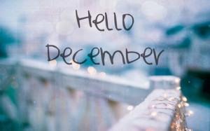 cynthia-selahblue (cynti19) Hello December!!!