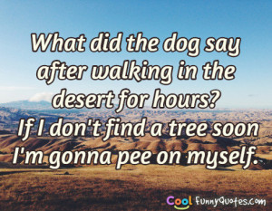 What did the dog say after walking in the desert for hours?