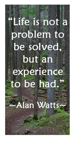 Alan Watts Quote About Life