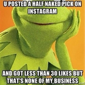 Kermit-the-Frog-memes-8.jpg