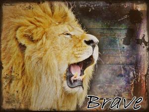 Brave Lion Brave lion by sandramandra