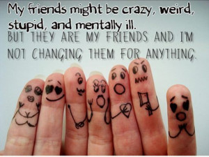 My Crazy Friends