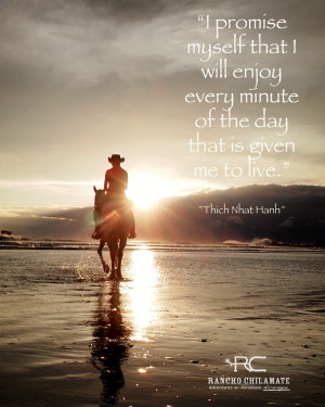 Inspirational Horse Quotes from Rancho Chilamate and Out of the Blue ...