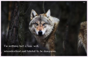 nothing but a lone wolf, misunderstood and labeled to be dangerous ...