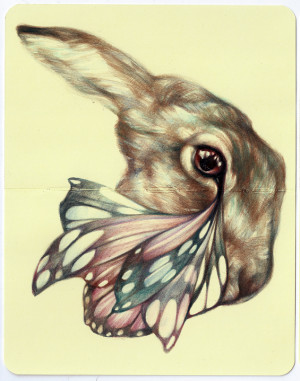 Surrealistic Colored Pencil Drawings Inspired By Herbalists And ...