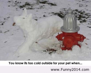 Funny Quotes Cold Weather Image Search Results