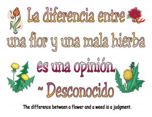 spanish_quotes.jpg