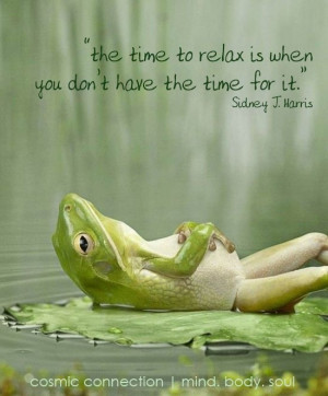 The time to relax is when you don't have the time for it. (via ...
