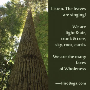 We are the many faces of Wholeness.