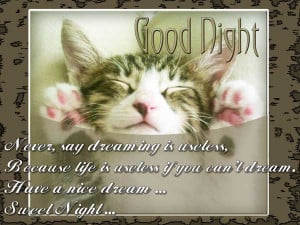 Popular Good Night Quotes and Sayings