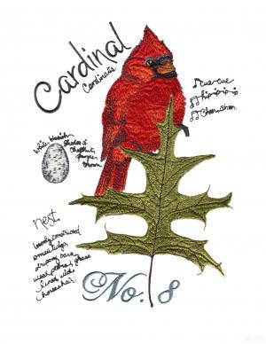 Bird205 Cardinal Bird Study Embroidery Design