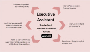Executive Assistant Role