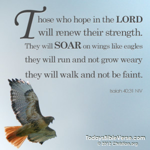 Today's Bible Verse - Daily Bible Verse on Facebook and Pinterest