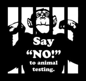 Animal Testing Quotes Say no to animal testing