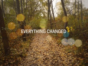 autumn, change, everything, forest, future, leaves, past, present ...