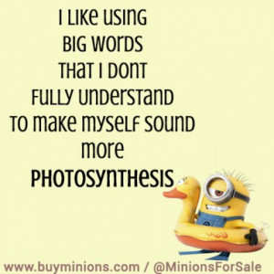 People say follow your #dreams… #funny #sleep #minionquote