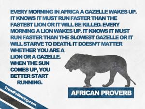 African Proverb Lion African proverb: lion and