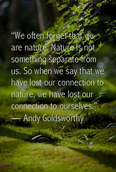 Andy Goldsworthy #quote More