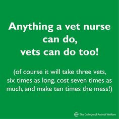how to become a licensed vet tech