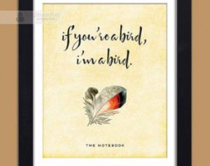 The Notebook Movie Quotes Bird Feather the notebook movie