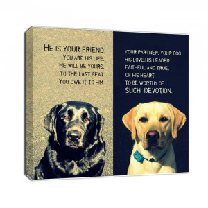 pet animal photo canvas quotes