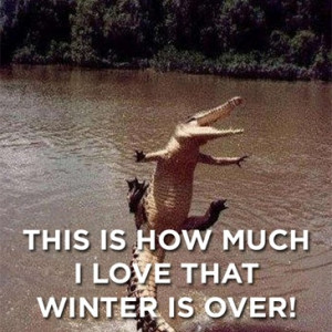 "This Is How Much I Love That Winter Is Over "" ~ Spring Quote"