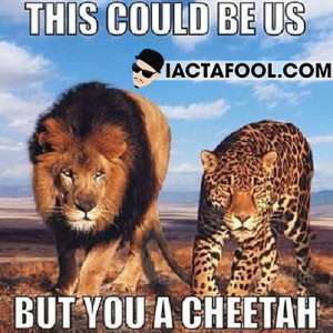 This Could Be Us But You A Cheetah