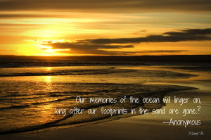 Inspirational Quotes About God Beach Beach living quote of the day
