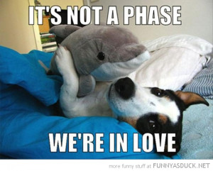dog animal cuddling hugging dolphin soft toy not phase in love funny ...