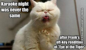 Funny Picture - Karaoke night was never the same - Cat karaoke