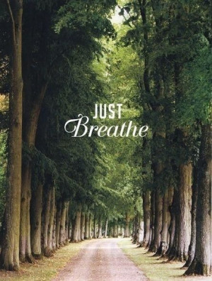 Just breathe, the path to all things is beautiful!